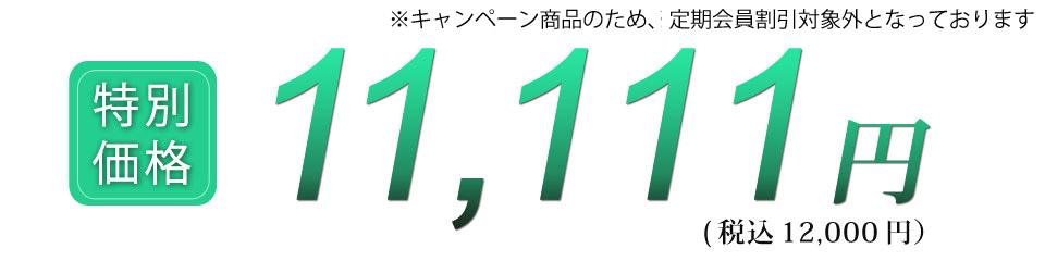 税込12000円