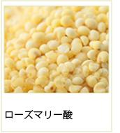 ローズマリー酸