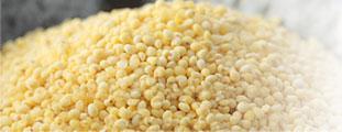 ミレットとは穀物のキビのこと
